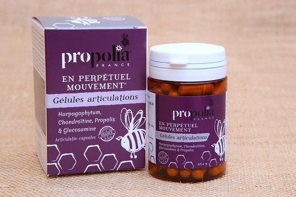 Gélules de Propolis-Articulations