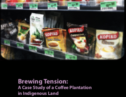 Brewing Tension:  A Case Study of a Coffee Plantation in Indigenous Land