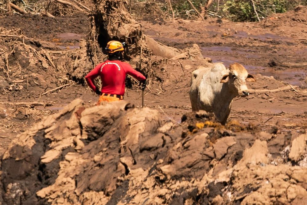 Foto: Giazi Cavalcante/Código19/Estadão Conteúdo