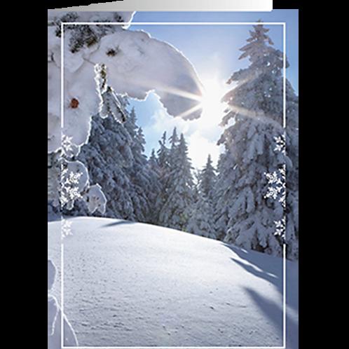 Weihnachtskarte Artikel #8154