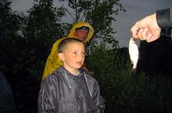 Fisk00.jpg