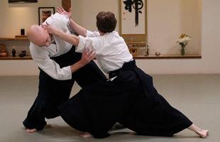 Home Page Aikido.jpg