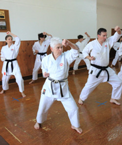 Long time Karate practicioner