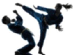 dodging-kick.jpg