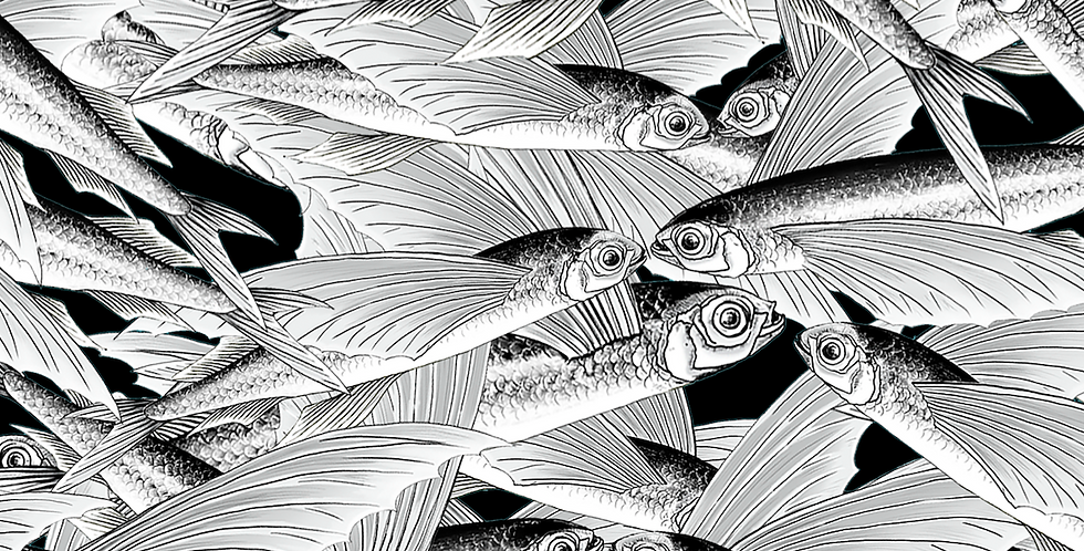 <<LOVE INSPIRES>> NEW  FLYING FISH collection   (INTERIOR FABRICS)