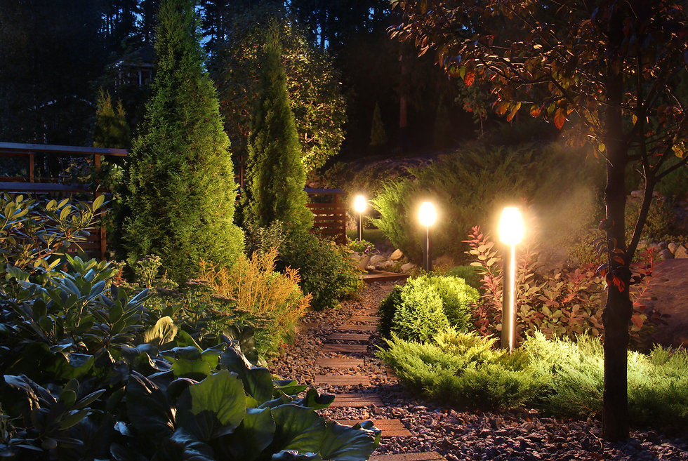 Landscape Lighting in Harbeson, Sussex County, DE