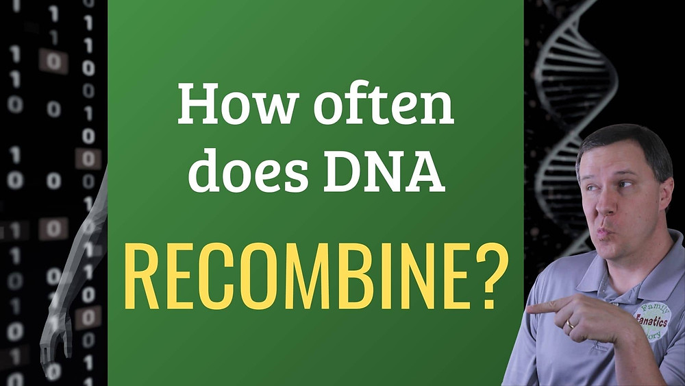 Video: How often does DNA recombine?