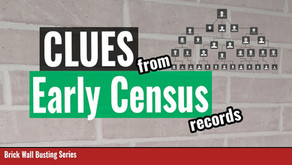 Use Early US Census Records to Research  Genealogy Brick Walls
