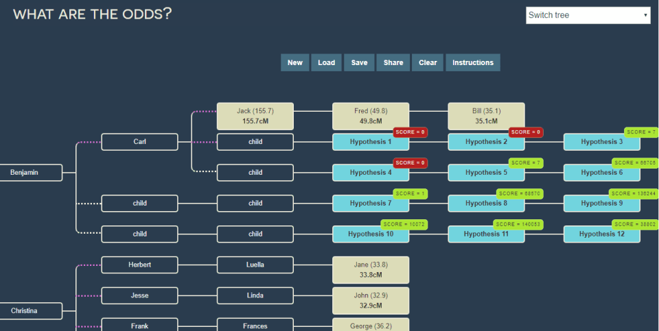 "Screen capture of the ""What are the odds"" tool from DNA painter"