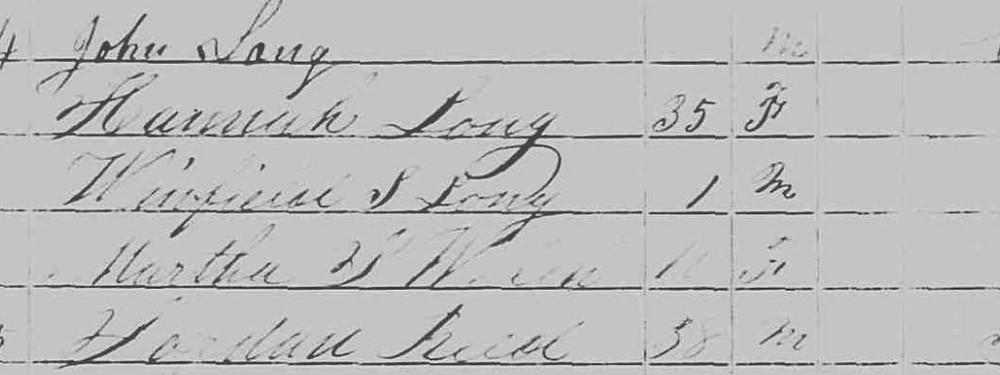 1850 Census entry for John Long of Pennsylvania
