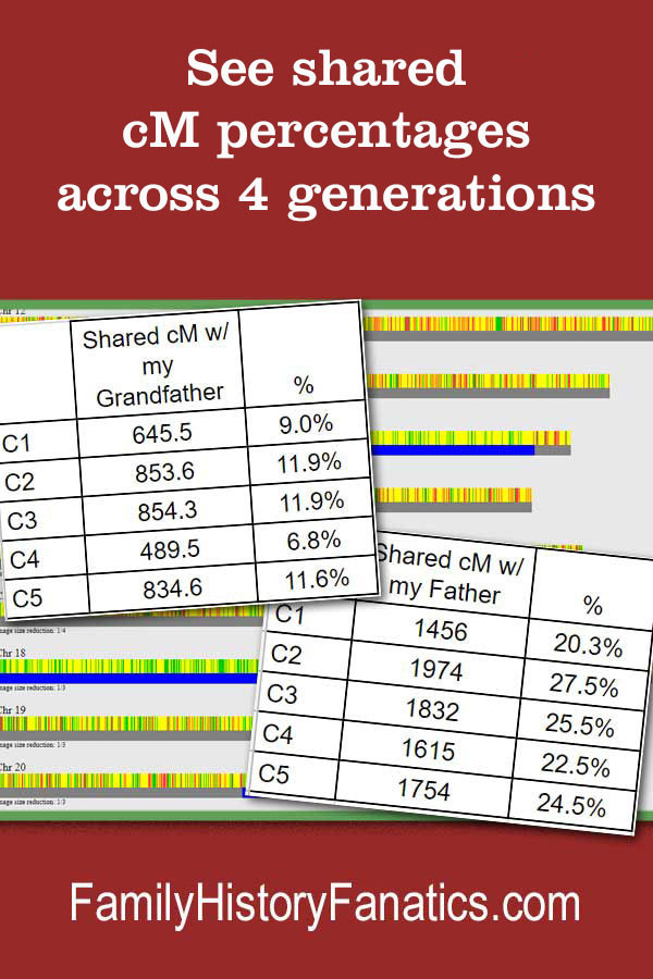 dna representations in GEDmatch with title see DNA change over 4 generations