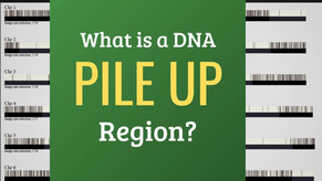 What are DNA Pile Up Regions?