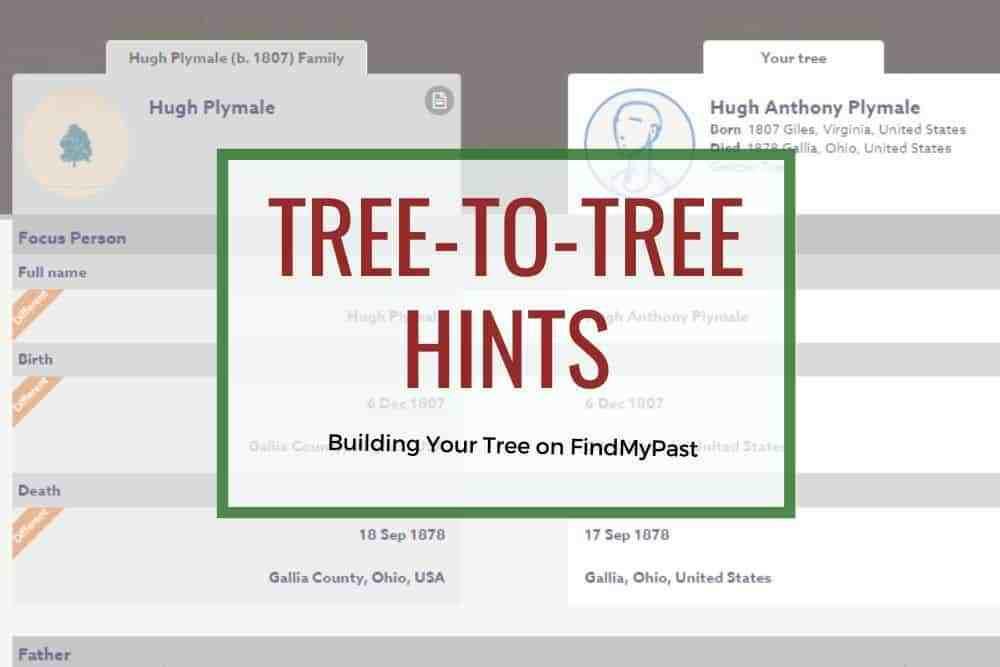 Findmypast tree to tree hints to build a family tree