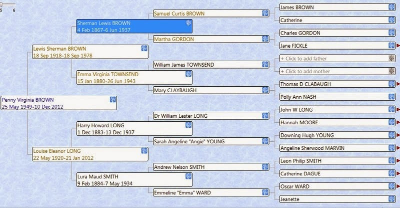 screen shot from RootsMagic of Louise Long Family Tree