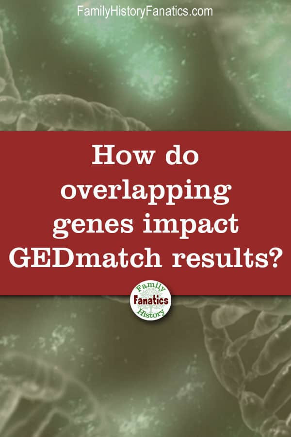 Learn why your DNA matches seem to 'disappear' on GEDmatch because of the overlapping genes problem. #genealogydna #geneticgenealogy #dna #FHFanatics #FamilyHistoryFanatics