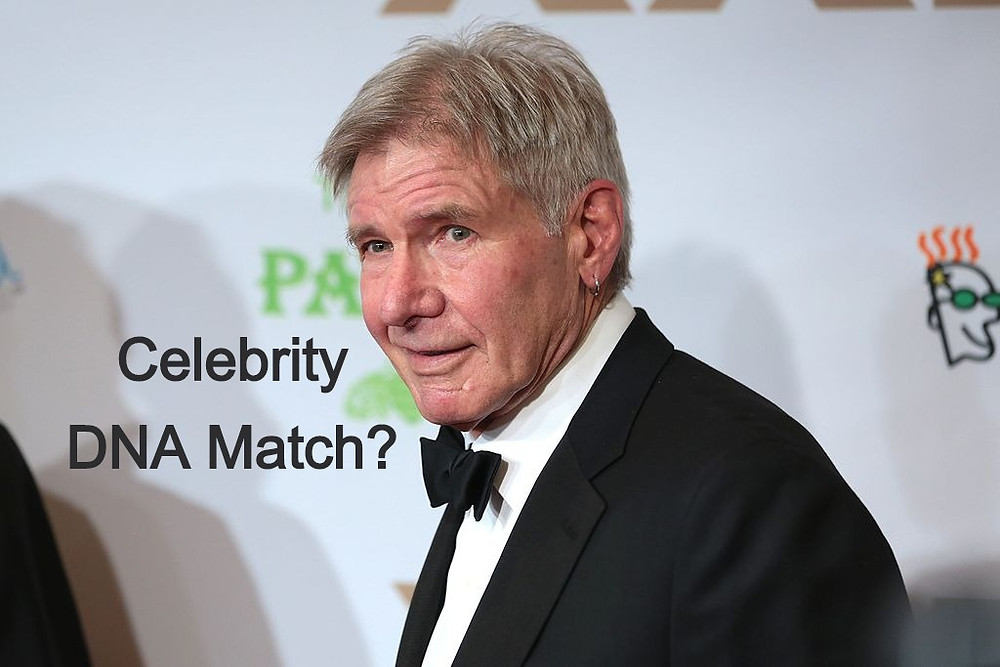 Celebrity DNA Matches - Harrison Ford