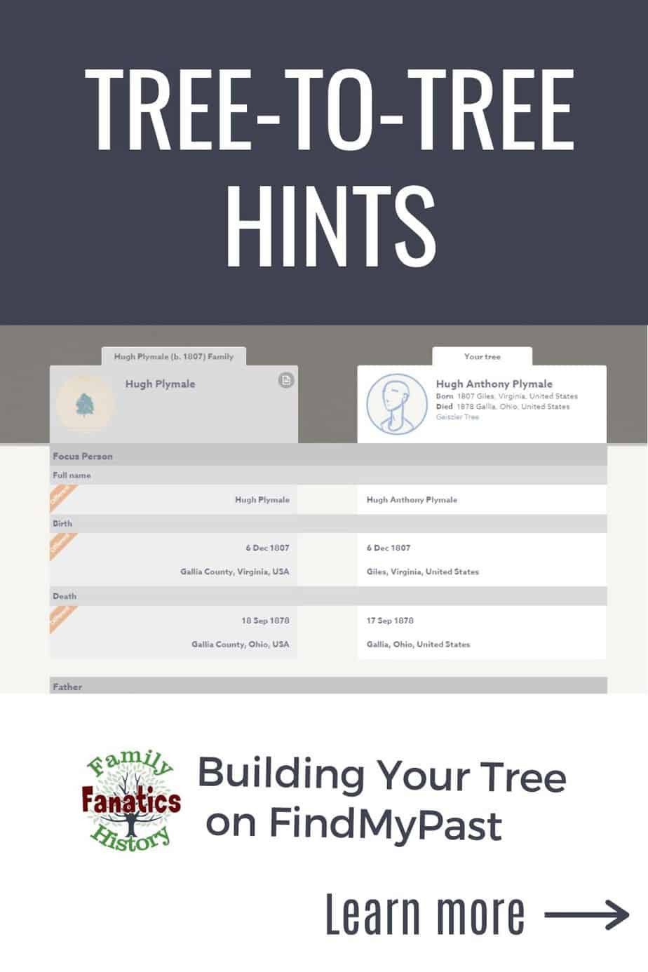 Screen capture of FindMyPast Tree-to-Tree Hints with the title Building Your Tree on FindMyPast