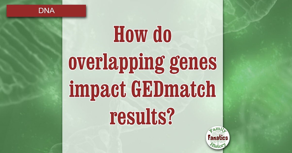 DNA with title how overlapping genes impact GEDmatch DNA restults