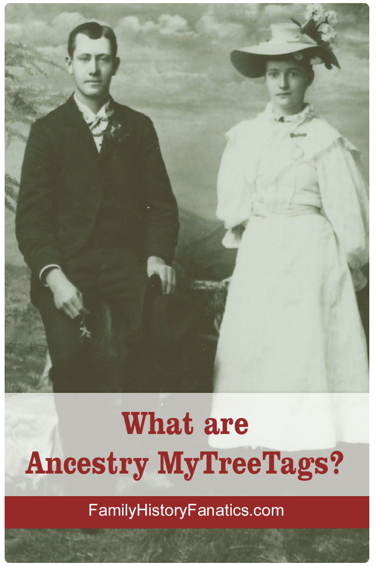Have you discovered how Ancestry.com's MyTreeTags can organize your rfamily tree organization and manage your genealogy research . #ancestry #genealogybasics #familytree