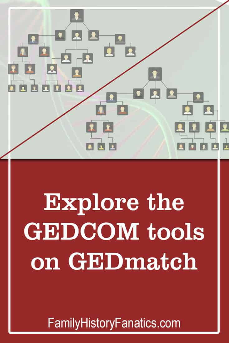 Learn you compare families trees across online tree platforms and power up your research with DNA matches. GEDmatch has GEDCOM file comparison tools to help your genealogical and dna research. #genealogy #geneticgenealogy #gedmatch
