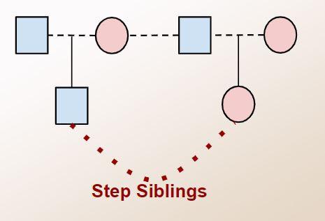chart of step-siblings