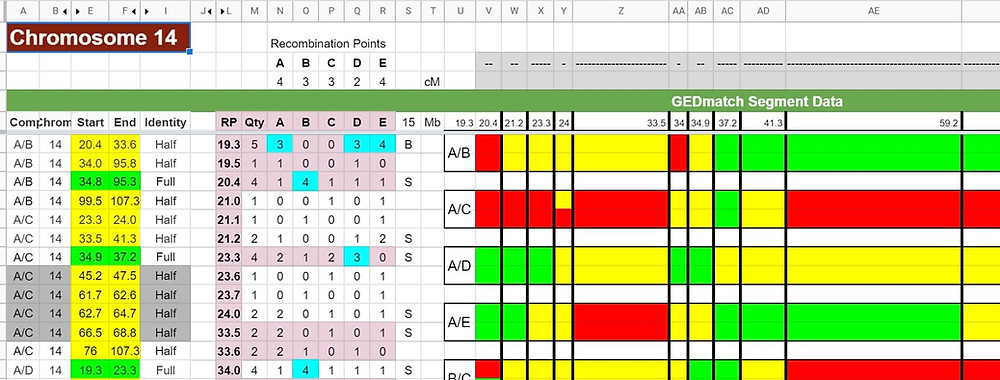 DNA Segment Phasing Spreadsheet