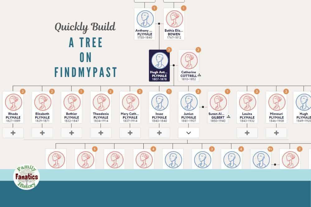 Findmypast Family Tree View