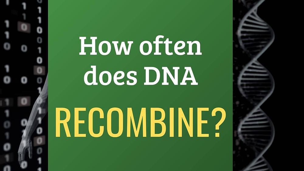 Ever wonder how often DNA recombines?