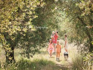 Une joyeuse séance Famille sous les oliviers