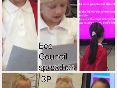 3P Eco-Council speeches
