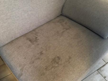 Perché buttarlo se basta solo lavarlo e igienizzarlo? Da noi potete vedere il vostro divano pulito!