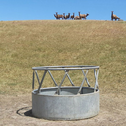 bale-feeder-timaru-canterbury.jpg