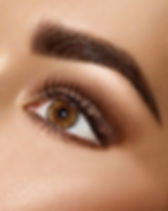 shutterstock brows.jpg