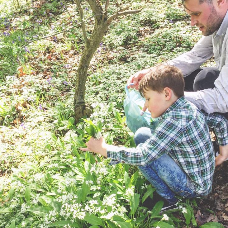 May Blog: Wild Garlic Foraging