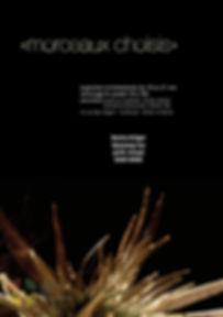 MJAC-morceauxchoisis-afficheweb.jpg