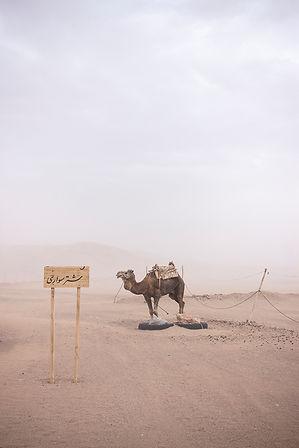 IRAN-0304.jpg