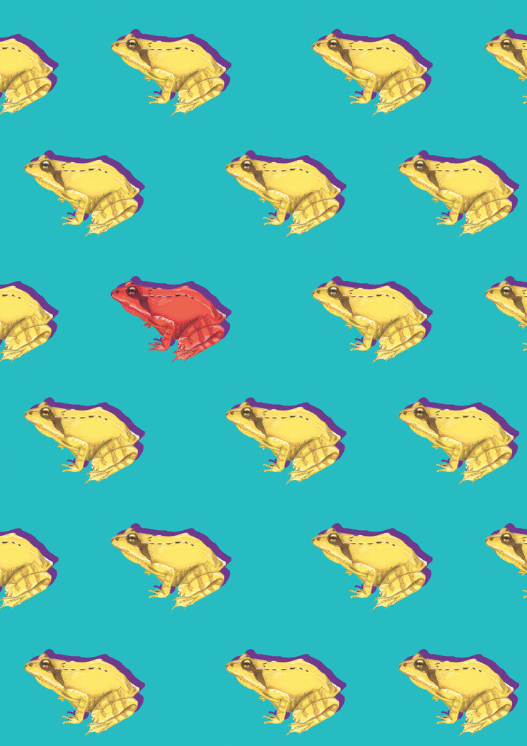 Frog Repeat Pattern