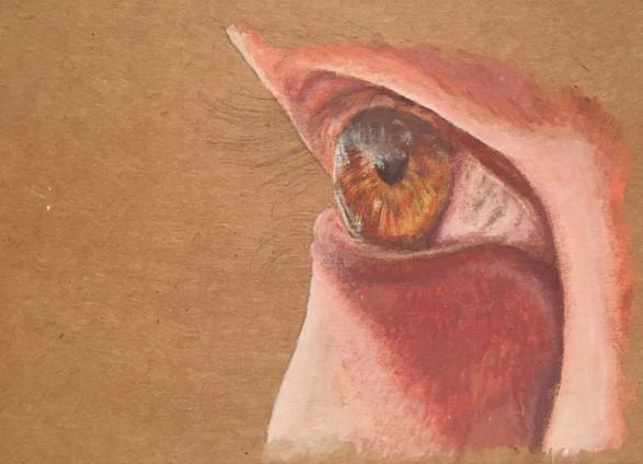 Eye (unfinished)