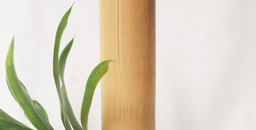 Set of Glass and Bamboo straw
