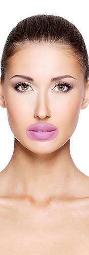 Lippen       Aufbau