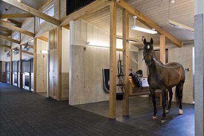 Dressage Horse Barn