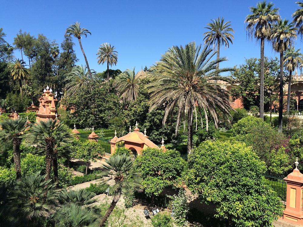 Séville, les jardins de L'Alcazar