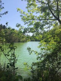 Le lac paisible