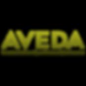 kisspng-logo-dundrum-town-centre-aveda-b