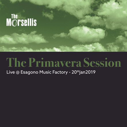 The Morsellis / The Primavera Session
