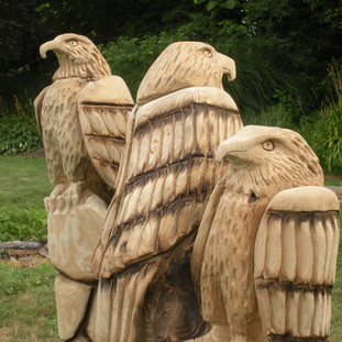 Some of my early eagles. These were done in my first or second year of carving. The grain in this Catalpa wood is awesome.