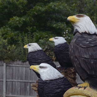 I try to reflect courage in my eagles.   Photo by www.MonstrInTheDark.com
