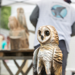 Carving at a Birds of Prey show in Brewster, NY. June 2017