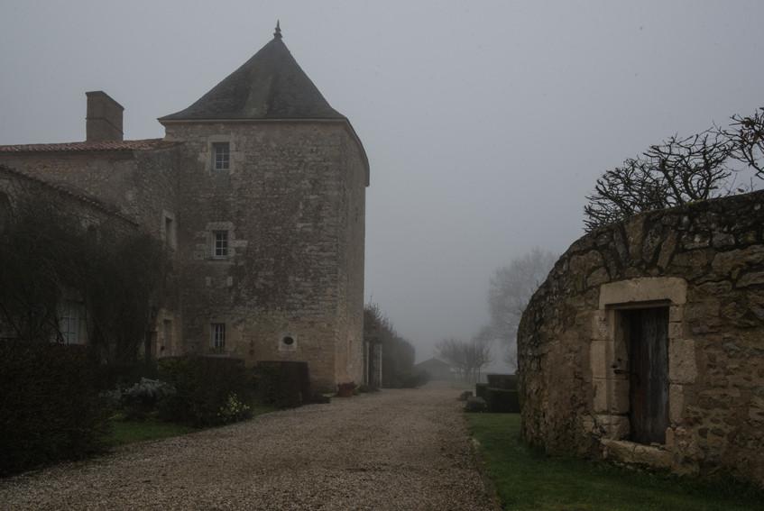pBER3622-_20_pfévrier_2019_-_Oeil_Vendée