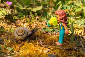 Gilbert escargot.jpg